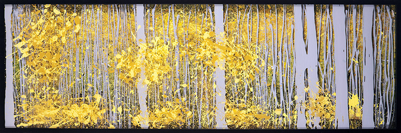 PanorAspens - Grey Forest